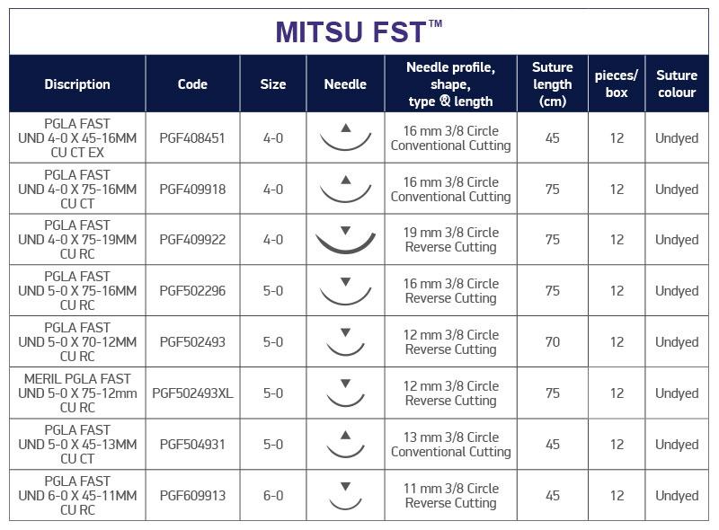Technical Characteristics Mitsu FST